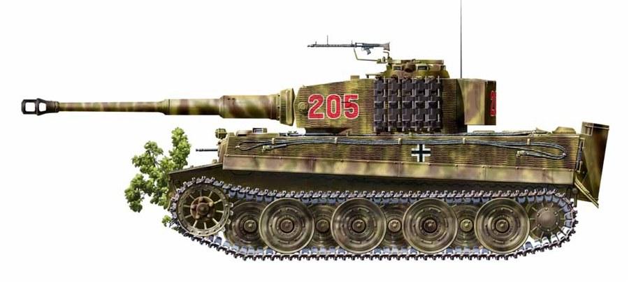 [Image: Tiger%20205.jpg]